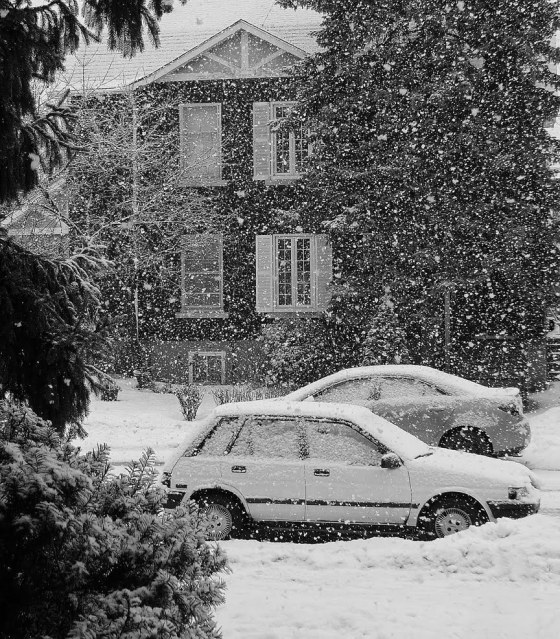 >bye, bye snow
